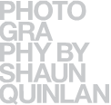 shaun quinlan photography